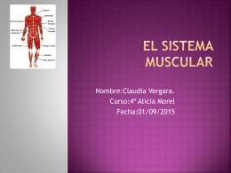 claudia vergara sistema muscular