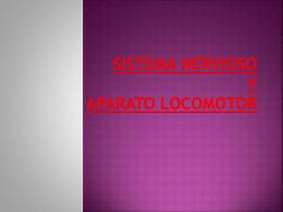 Sistema nervioso y Aparato locomotor