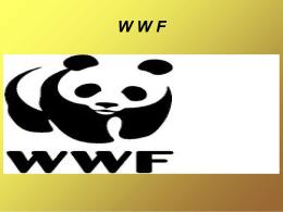 WWF - COMO NOSOTROSSS