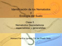 Nematology 100