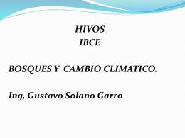 Presentación HIVOS - IBCE Ing, Gustavo Solano Garro