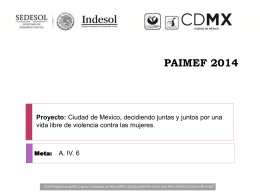 PAIMEF 2014 - Violencia contra las mujeres jóvenes