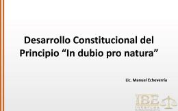Manuel. Desarrollo Constitucional del Principio in dubio pro
