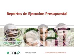 IT - presentacion reportes ejecucion presupuestal