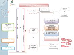 Ruta de atención a mujeres víctimas de violencia intrafamiliar (VIF)