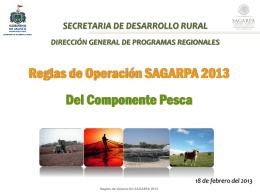 reglas de operacion sagarpa dos 2013