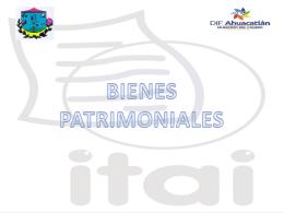 16.- Bienes Patrimoniales - DIF