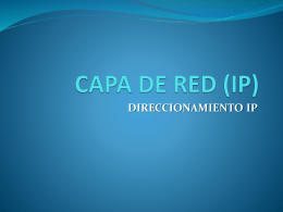 CAPA DE RED (IP)