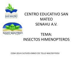 Descarga - agro-forestales emprendedores guatemala c.a la fabrica