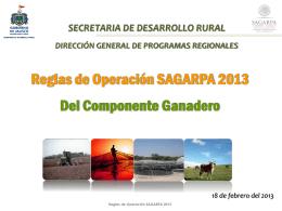 Reglas de Operacion Sagarpa tres 2013