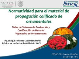 Presentacion_Taller de certificación en - snics