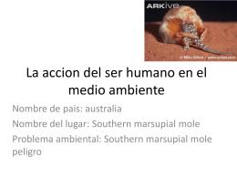 La accion del ser humano en el medio ambiente