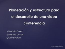 Planeación y estructura para el desarrollo de una video conferencia