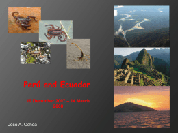 Ecuador - Our Research