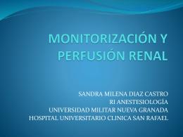 monitorización renal