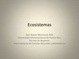 Ecosistemas - Universidad Interamericana de Puerto Rico