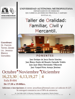 Taller de oralidad: familiar, civil y mercantil