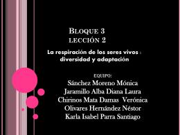 Chirinos Veronica - est116