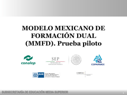 NUEVO PROGRAMA-Modelo Mexicano