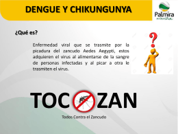Presentacion-Chikungunya