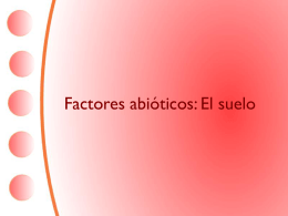 Factores abióticos: El suelo