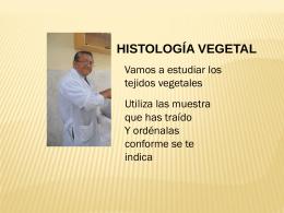 Histologia_practica labo