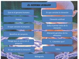 El Genoma humano (1373361)