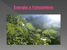 Energía y Fotosíntesis