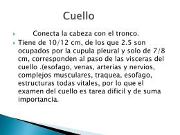 Diapositiva 1 - rolandoramirez