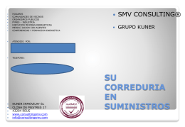 File - ConsultingSMV