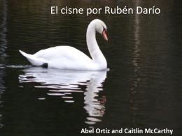 El cisne por - LiteraturaUMass2011