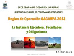 Reglas Sagarpa siete 2013