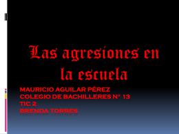Mauricio Aguilar Pérez colegio de bachilleres n° 13