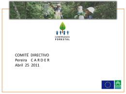 3. Avances presentación - Proyecto Gobernanza Forestal
