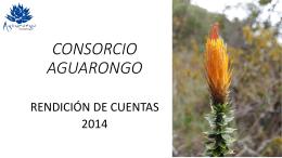 presentacion rendicion de cuentas consorcio aguarongo 2014