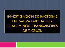 INVESTIGACIÓN DE BACTERIAS EN SALIVA