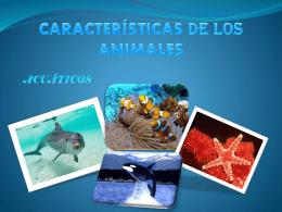 CARACTERÍSTICAS DE LOS ANIMALES tic
