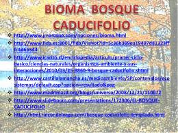 bioma bosque caducifolio