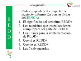 9 JENGA_ REDD+_Chihuahua