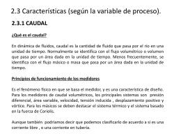 2.3.1 CAUDAL - instrumentaciontest