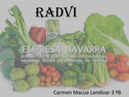 RADVI - cs3proyectos