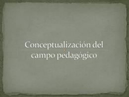 Conceptualización del campo pedagógico