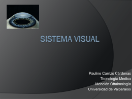 Clase S. Visual 10.2..