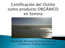 CERTIFICACION ORGANICA DE OSTION EN SONORA