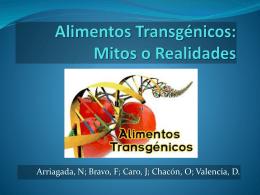 Alimentos Transgénicos - transgenicosmitosyrealidades