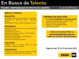 Promoción Interna - RESP. DE PROYECTO MINERO (El Castillo)