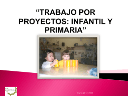 Pautas_seminario_proyectos