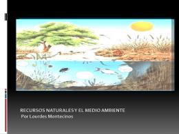 BIODIVERSIDAD RECURSOS NATURALES Y EL MEDIO