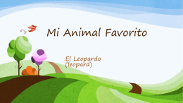 Mi Animal Favorito por juan jose torres