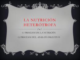 LA NUTRICIÓN HETERÓTROFA